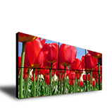 LCD Video-wall - LW - 5580 TR IA