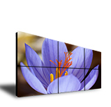 LCD Video wall - LW - 5580 TR IA